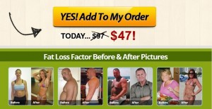 Fat Loss Factor
